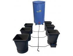 xl6-6-pot-high-250x192